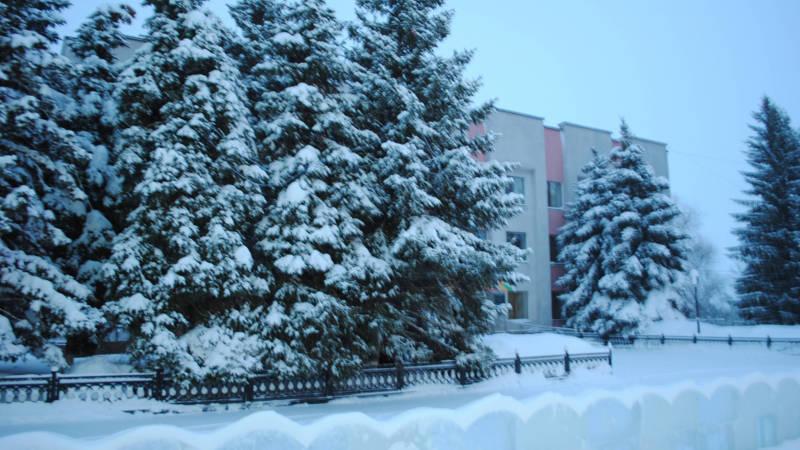 Фотография в Кармаскалинском районе: Заснеженные ёлки перед райкомом ВЛКСМ