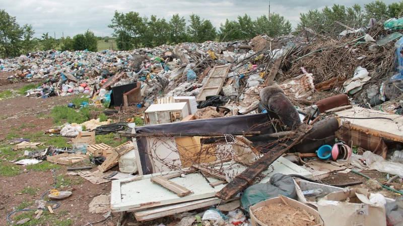 На мусорном полигоне
